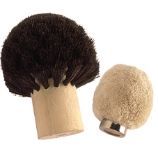 Mushroom-Shaped Brushes